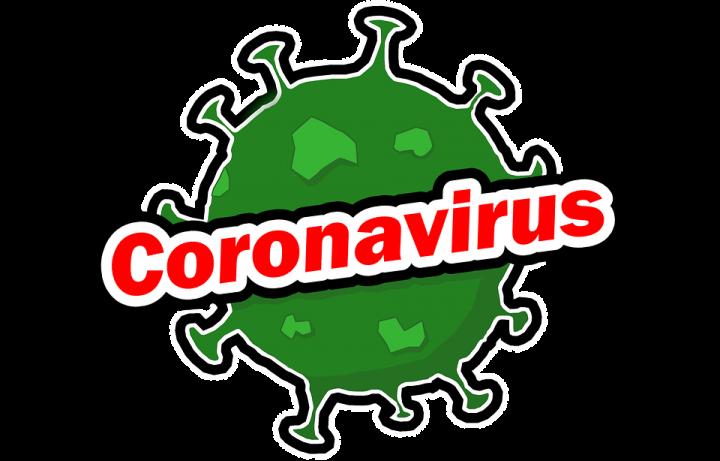 coronavirus España dominios web